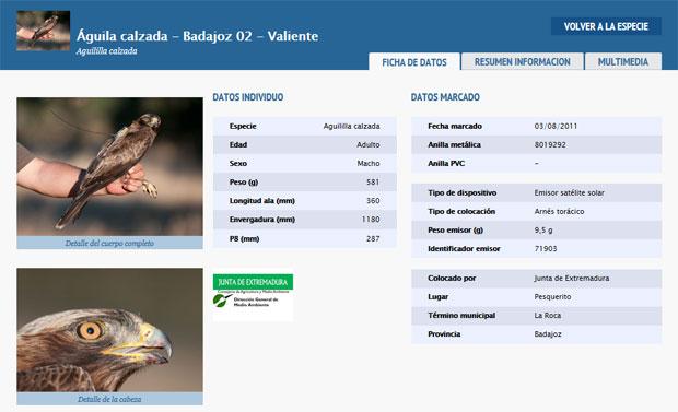 Ficha de aves Migra