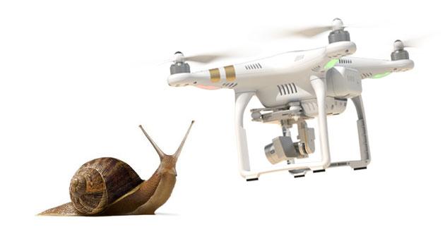 zonas con fauna sensible para drones
