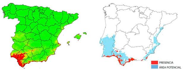 aptitud territorial clima