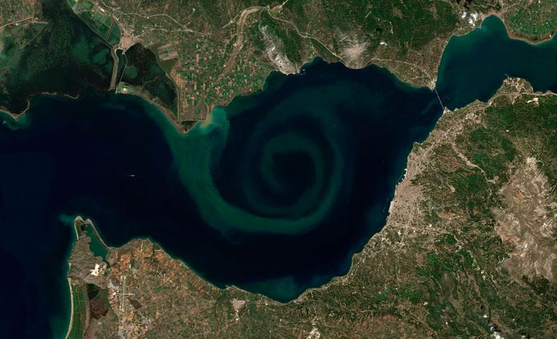 Bloom Algae Golgo de Patras