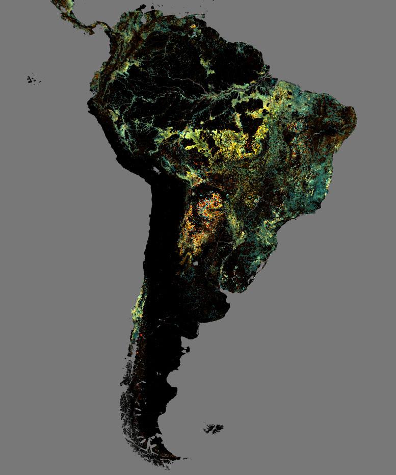teledeteccion analisis de pérdida de superficie forestal