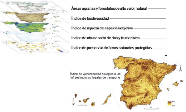 fragmentación de hábitats y pérdida de biodiversidad