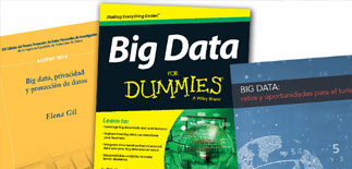 Descarga De Manuales De Big Data Gis Beers