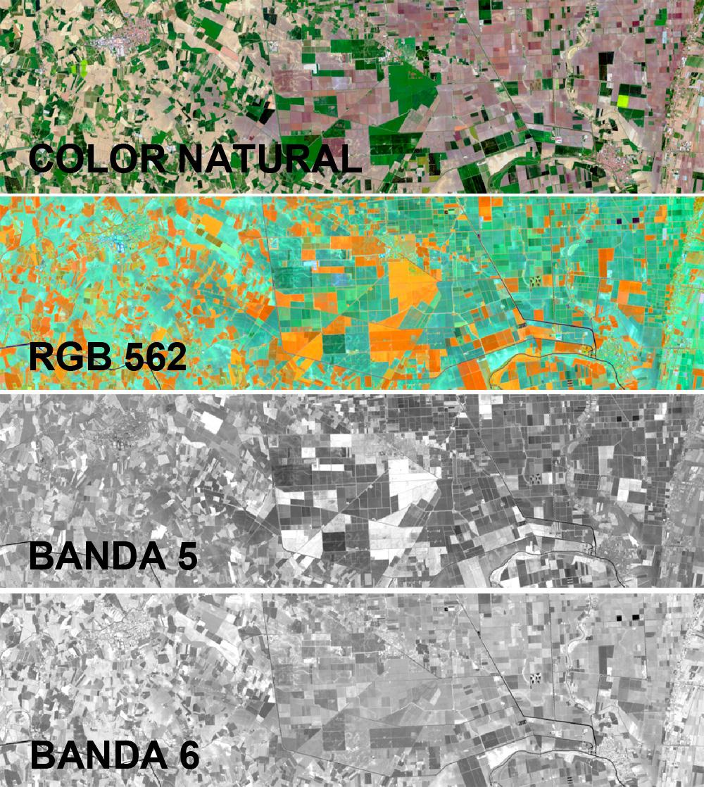 Cómo interpretar una imagen satélite a falso color con colores RGB