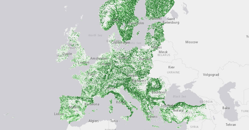 Mapa forestal de densidad de cobertura arbórea