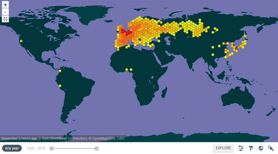 Cartografía de anfibios y reptiles GBIF