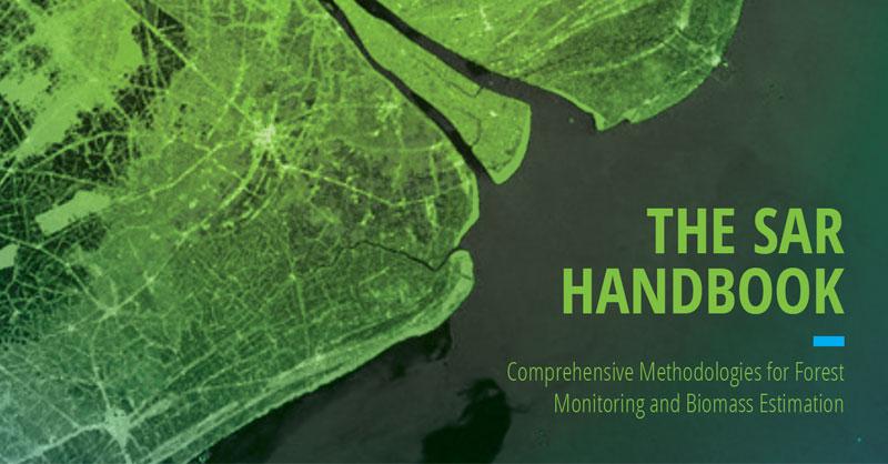 Manual SAR para Monitoreo forestal y estimas de biomasa