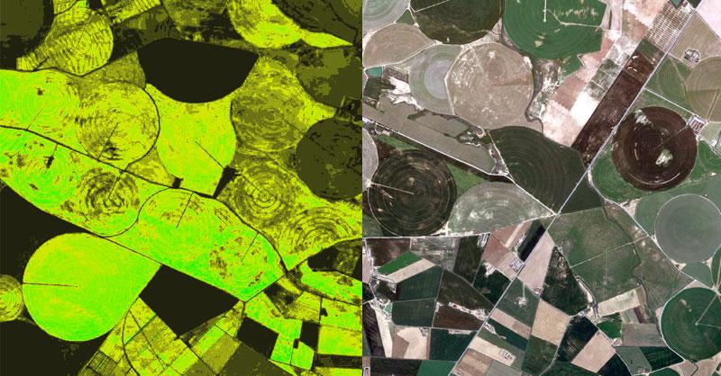 GLI, el índice de vegetación alternativo para drones
