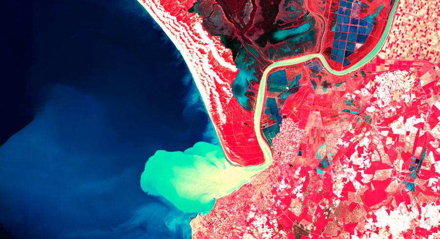 Doñana, sedimentación de sólidos