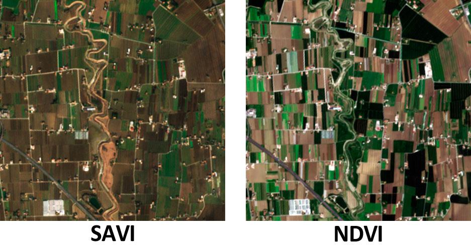 Cálculo del índice satélite de vegetación SAVI