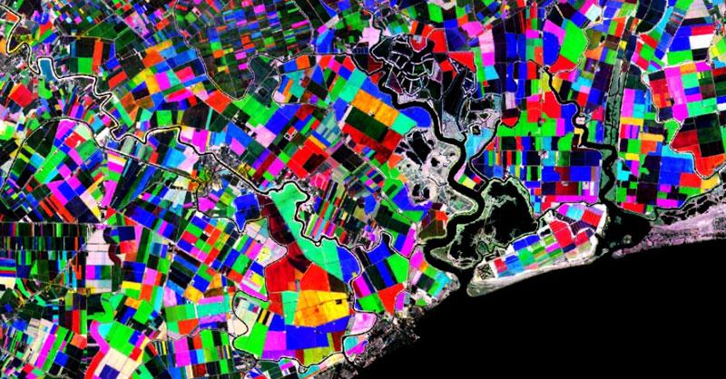 Toolbox para análisis multitemporal de vegetación