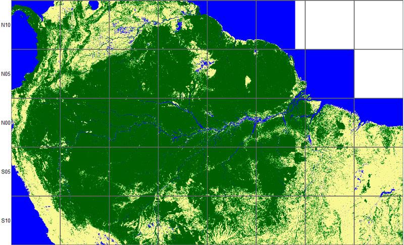 Mapa forestal con datos radar