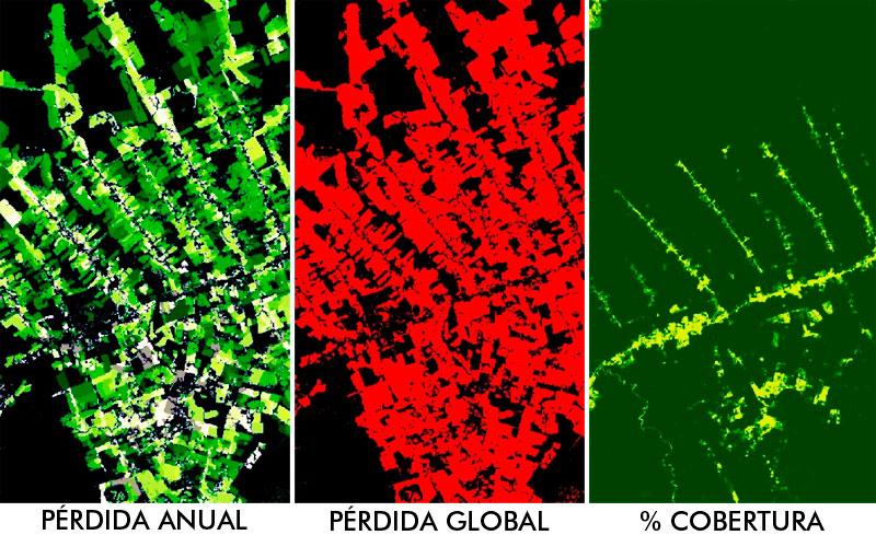 Análisis de masas boscosas con teledetección