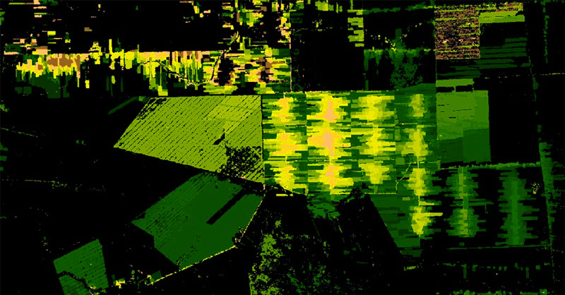 Análisis de pérdidas de masas forestales en Google Earth Engine