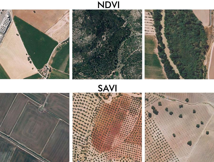 Comparativa de índice de vegetacion SAVI frente NDVI