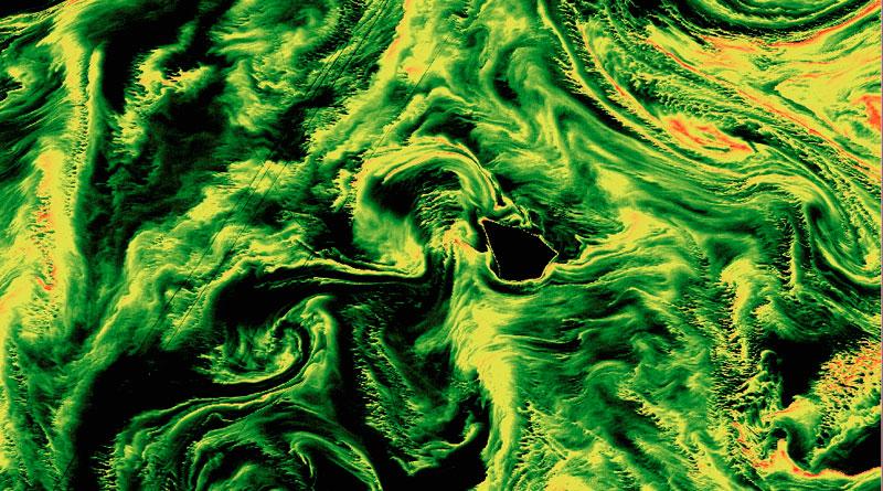 Cálculo del índice FAI para la localización de algas