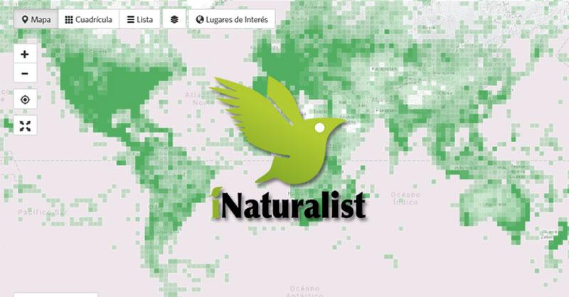 Coordenadas de distribución de especies con iNaturalist