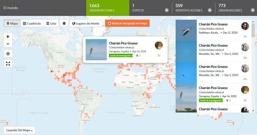 Distribución de especies iNaturalist