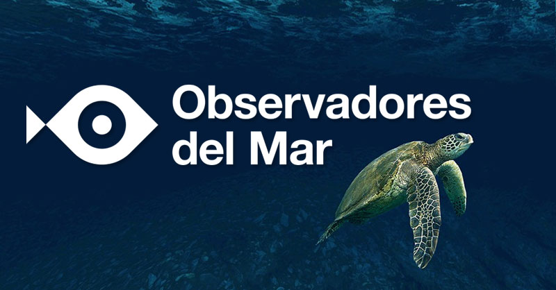 Distribución de especies marinas por ciencia ciudadana