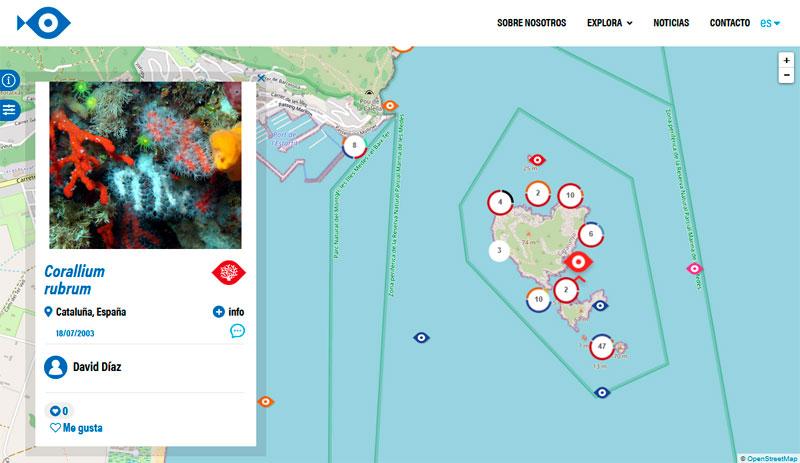 Mapas de distribución de fauna marina