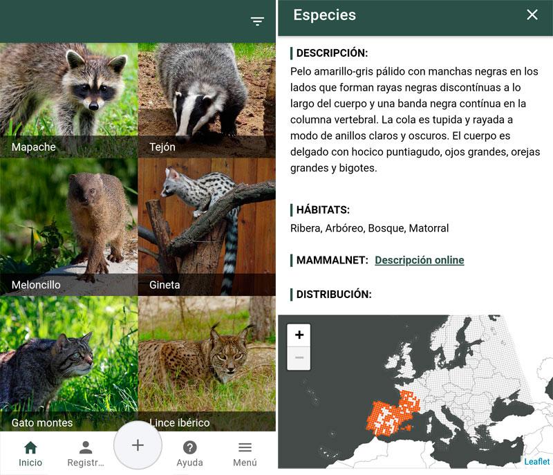 aplicación GPS de campo para distribución de especies