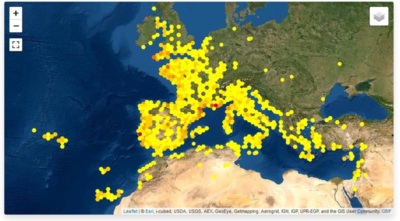 Cartografía de distribución de plantas