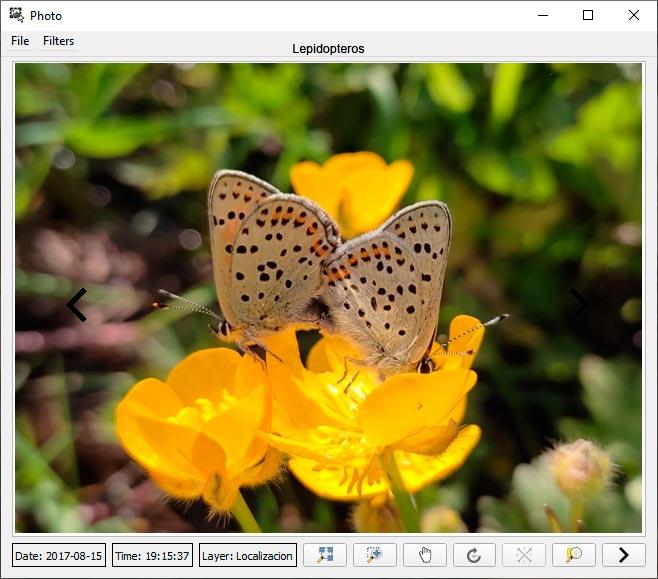 Vincular fotografía a shapefile
