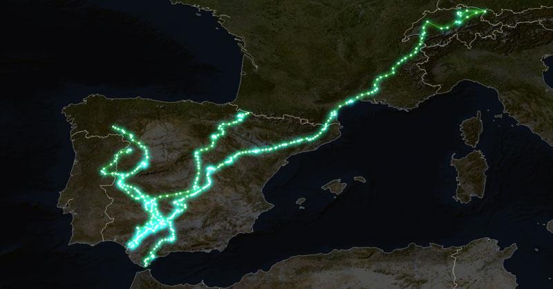 Mapas de radiotracking para conservación de especies